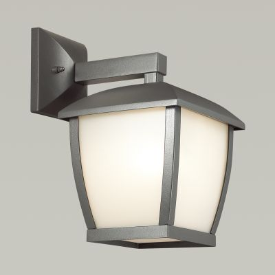 Odeon Light 4051/1W Уличный настеный светильник Цвет: темно-серый/матовый белый