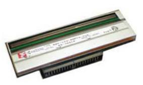 Zebra ASSY (G105910-148) печатающая головка
